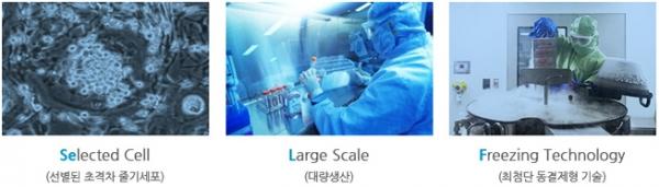 ▲강스템바이오텍의 셀럽(SELAF) 플랫폼 기술